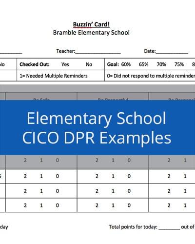 Elementary School CICO DPR Examples